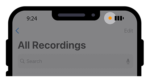 Recording Indicator