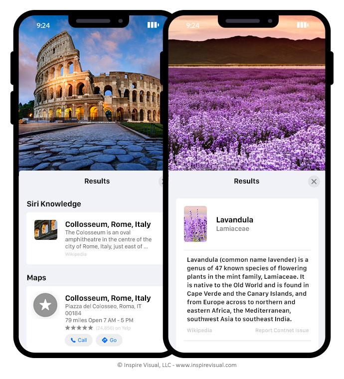 Visual Look Up in iOS 15